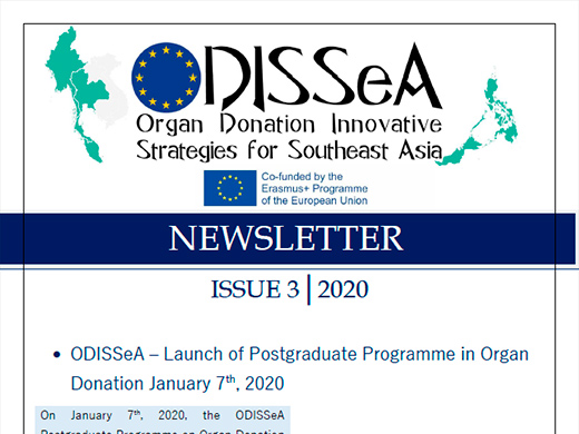 3rd Newsletter of ODISSeA Project (PDF - 1.130KB)